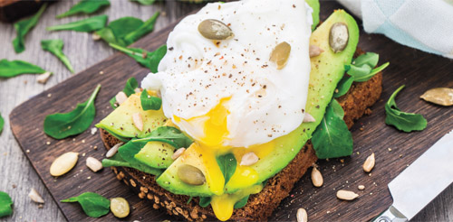 Avocado + Egg + Whole Grain Bread