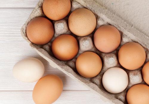 Huevos - Preguntas frecuentes