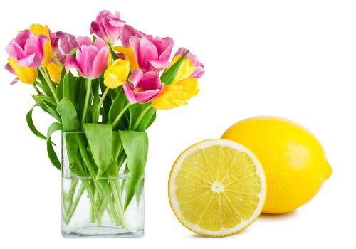 consejos para la limpieza de primavera